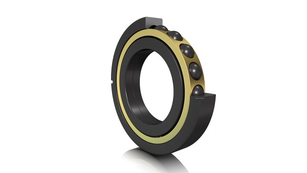 FAG four point contact bearing